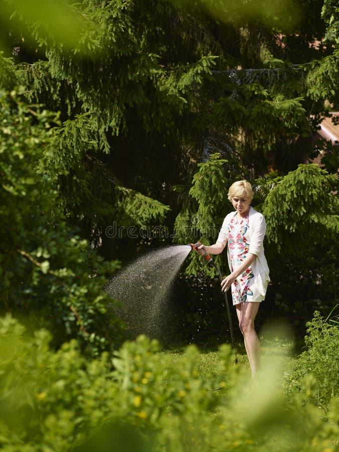 Mujer y manguera de jardín fotos de archivo