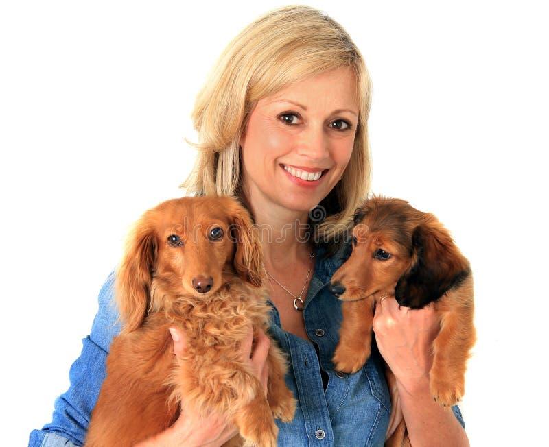 Mujer y perritos. foto de archivo libre de regalías