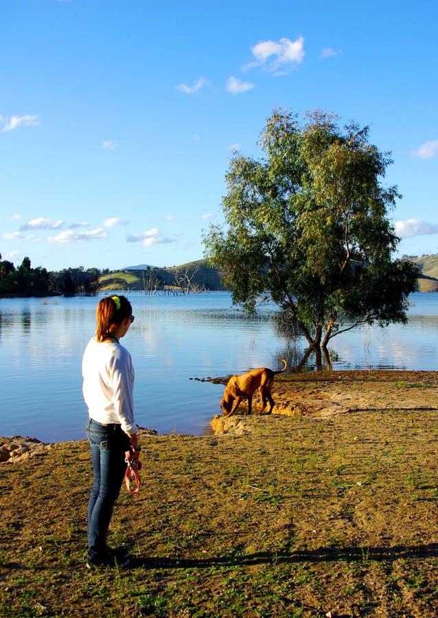 Mujer y perro en el lago Eildon fotografía de archivo libre de regalías
