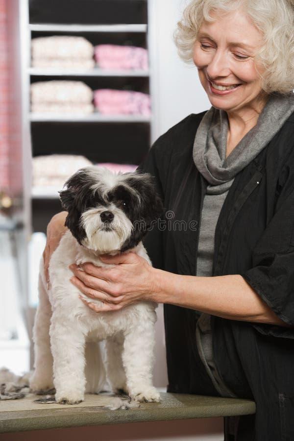Mujer y perro en el salón de la preparación del animal doméstico fotos de archivo