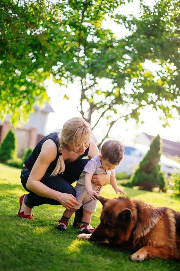 Mujer y su pequeño bebé que juegan con el perro foto de archivo libre de regalías