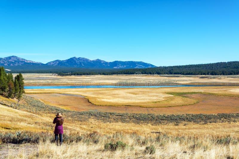 Mujer y valle en el parque nacional de Yellowstone foto de archivo