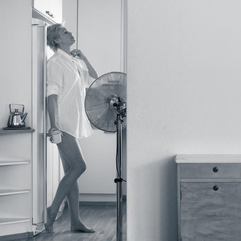 Mujer y ventilador imagen de archivo