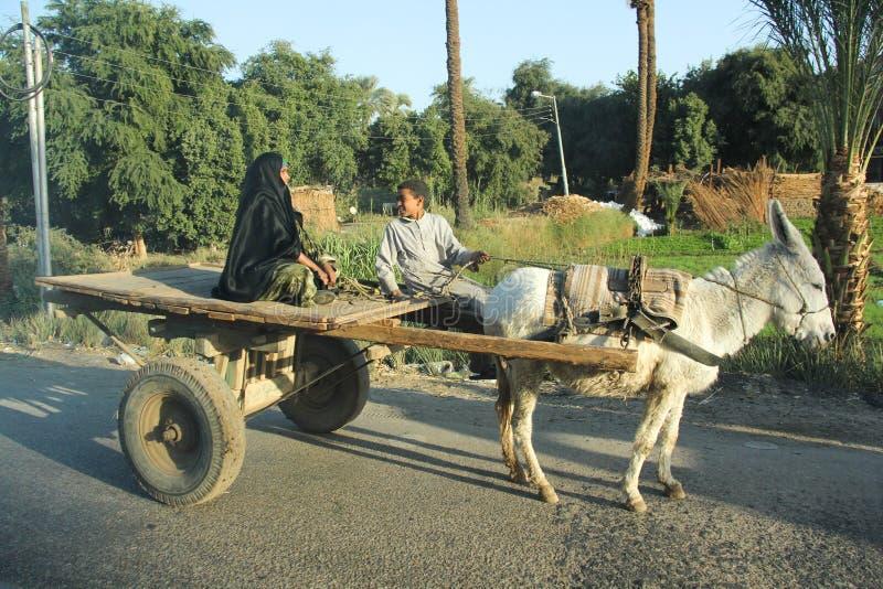 Mujeres árabes con el sol y el burro imagen de archivo