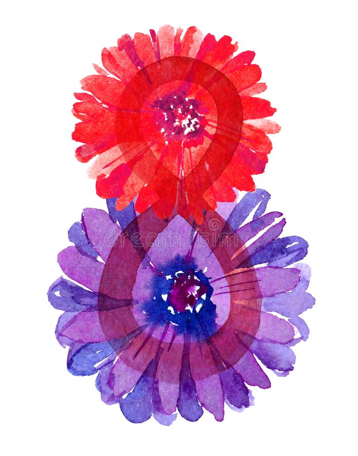 Mujeres día 8 de marzo con la manzanilla de las flores aislada en la acuarela blanca del fondo para la tarjeta de felicitación libre illustration