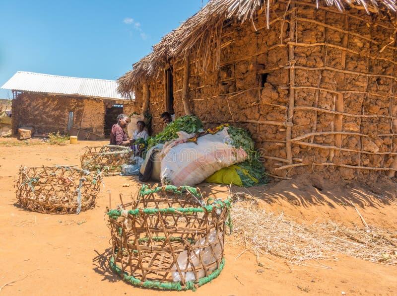Mujeres de Giriama que preparan las verduras para el mercado foto de archivo