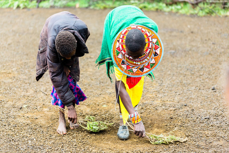 Mujeres de Massai que barren el piso que hace tareas foto de archivo