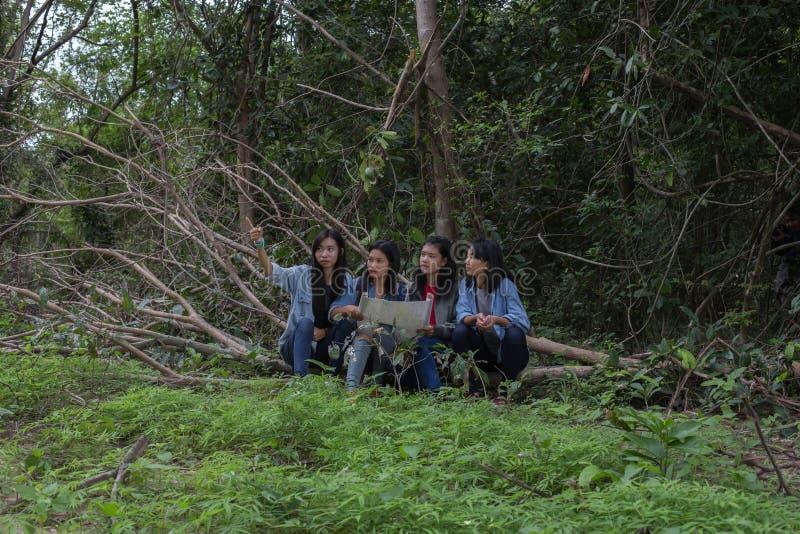 Mujeres del grupo de mujeres jovenes bondadosas en naturaleza fotografía de archivo