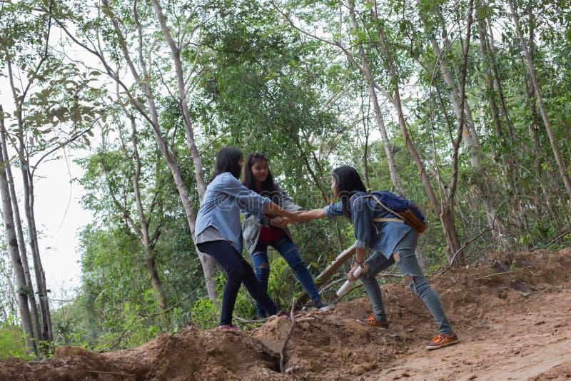 Mujeres del grupo de mujeres jovenes bondadosas en naturaleza imágenes de archivo libres de regalías