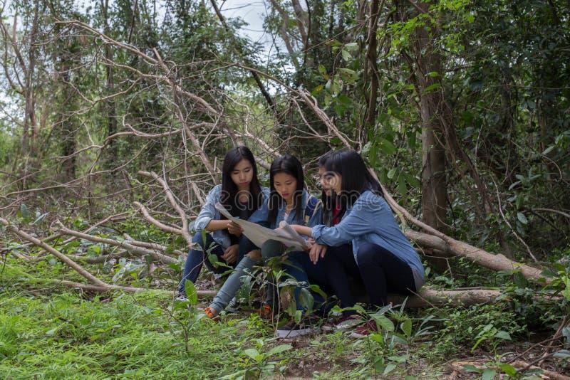 Mujeres del grupo de mujeres jovenes bondadosas en naturaleza fotos de archivo