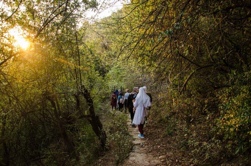 Mujeres en caminar viaje en el bosque de Himaayas fotografía de archivo libre de regalías