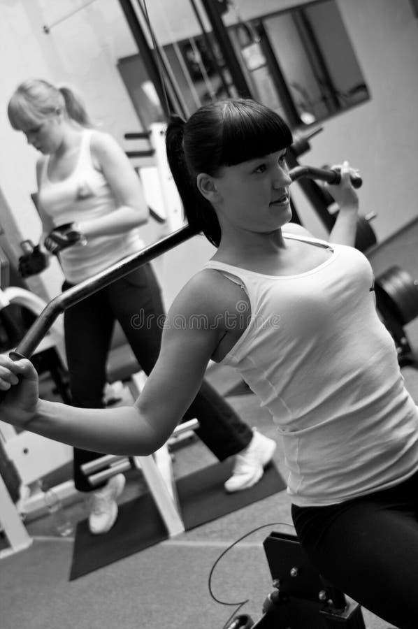Mujeres en gimnasia imagen de archivo libre de regalías