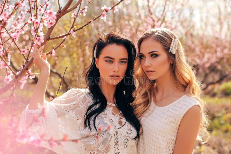 Mujeres hermosas en los vestidos elegantes que presentan entre ?rboles de melocot?n de florecimiento en jard?n imagen de archivo libre de regalías