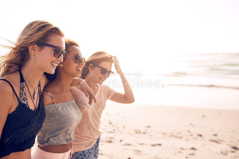 Mujeres jovenes felices que caminan en una playa imagen de archivo libre de regalías