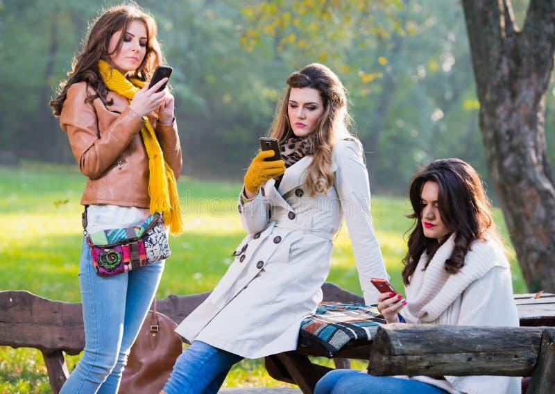Mujeres jovenes hermosas que usan los teléfonos celulares foto de archivo libre de regalías