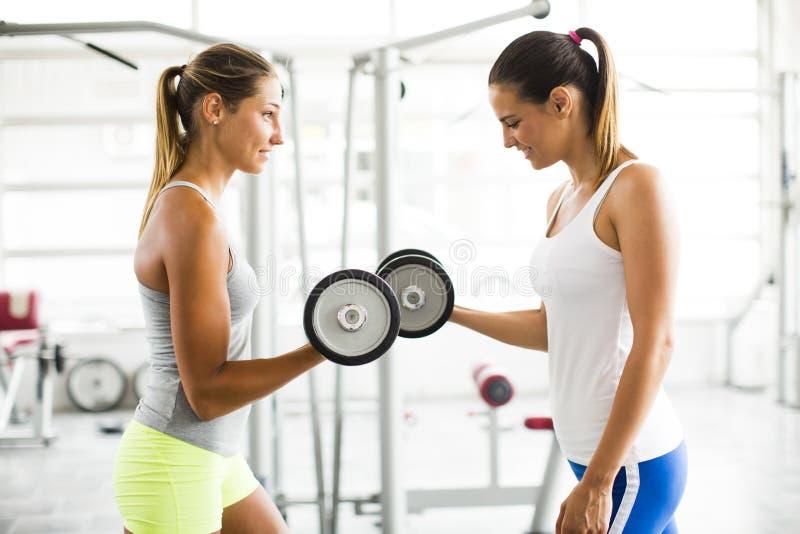 Mujeres jovenes que ejercitan pesos de elevación en el gimnasio imagen de archivo