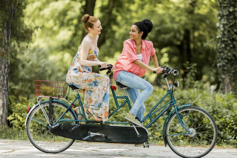 Mujeres jovenes que montan en la bicicleta en tándem imágenes de archivo libres de regalías