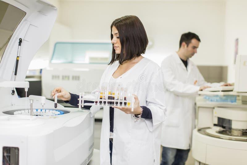 Laboratorio médico imagen de archivo libre de regalías