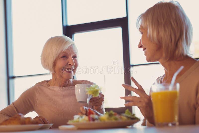 Mujeres mayores optimistas que cotillean durante almuerzo en café imagenes de archivo