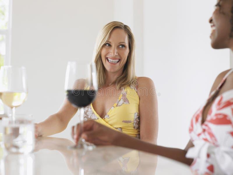 Mujeres multiétnicas que beben el vino imagen de archivo libre de regalías