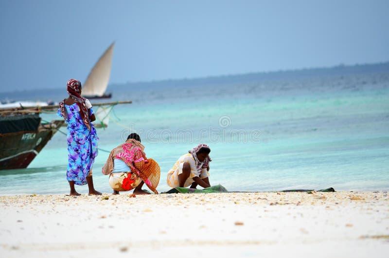 Mujeres musulmanes que se relajan en la playa, Zanzíbar imagenes de archivo