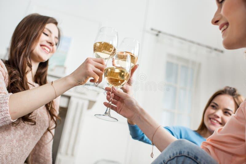 Mujeres que animan con el vino imagen de archivo