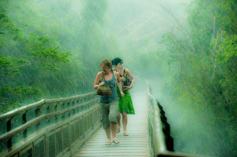 Mujeres que corren en la lluvia intensiva, lluvia de conducción en selva tropical cerca por las cataratas del Iguazú, el Brasil fotografía de archivo