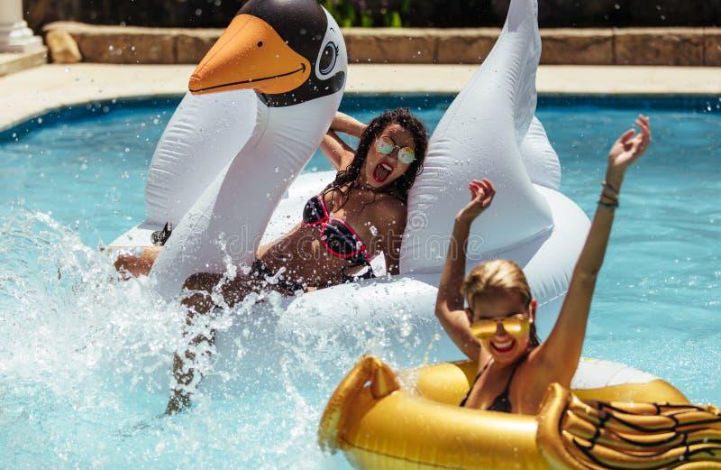 Mujeres que gozan en una piscina en sus vacaciones de verano foto de archivo