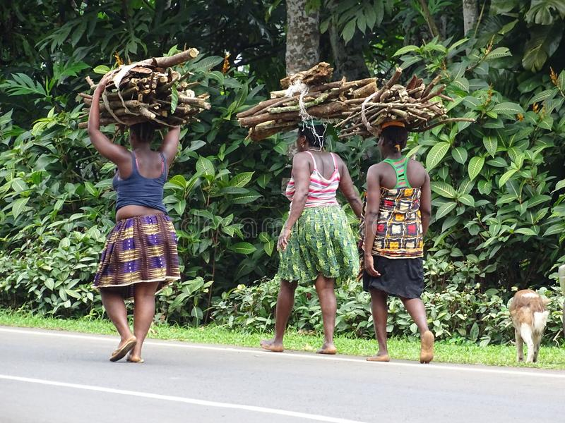 Mujeres que llevan la madera foto de archivo