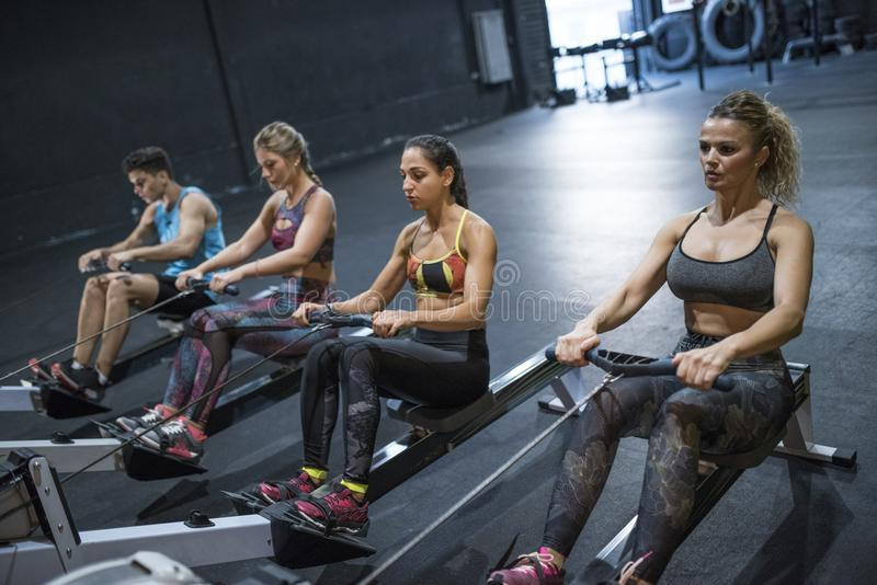 Mujeres que reman en gimnasio y que entrenan en sitio del crossfit de la aptitud fotos de archivo libres de regalías