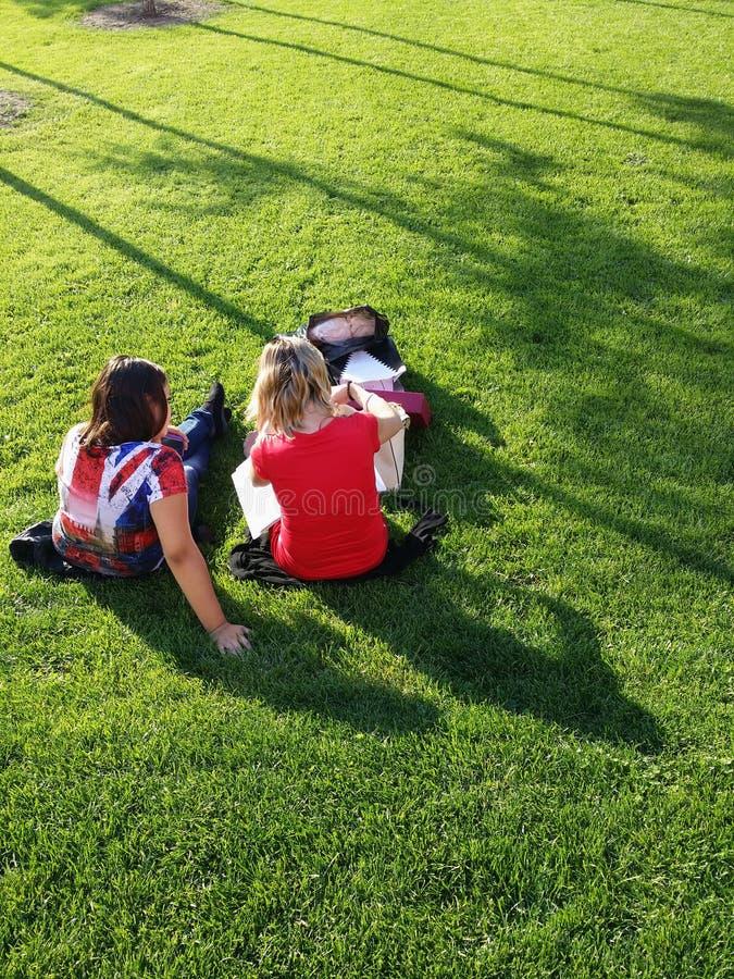 Download Mujeres Que Se Sientan En La Hierba Foto editorial - Imagen de hierba, sentada: 44856316
