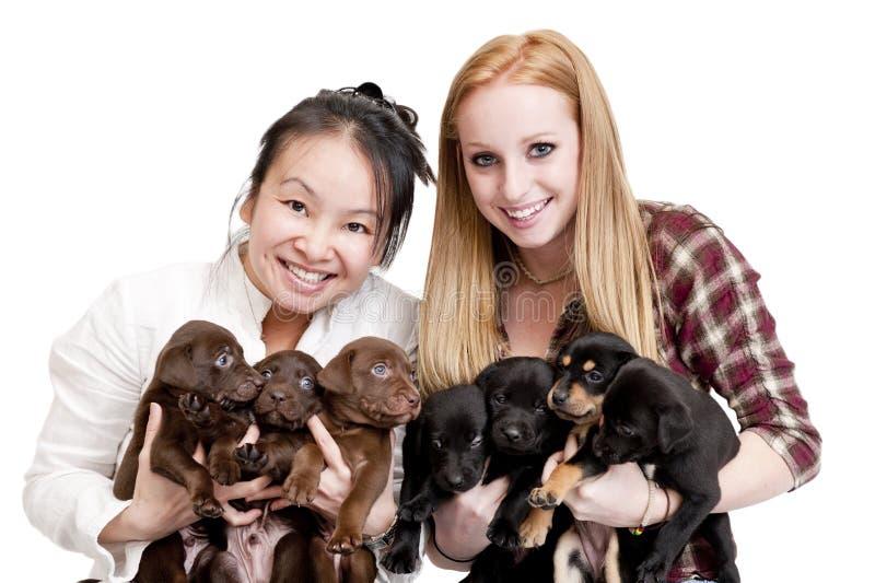 Mujeres que sostienen perritos fotografía de archivo libre de regalías