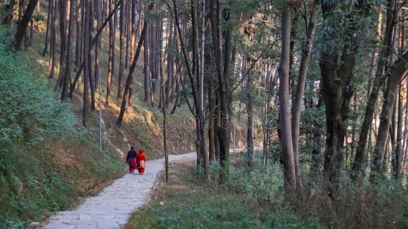 Mujeres que van para un paseo de la mañana foto de archivo