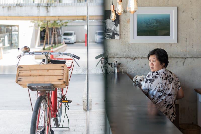 Mujeres y perro asiáticos en cafetería con la bicicleta foto de archivo