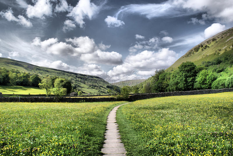 Muker Meadows ~ The Dales. A view of meadows taken near Muker, Swaledale, The Dales, North Yorkshire, England, UK royalty free stock photography