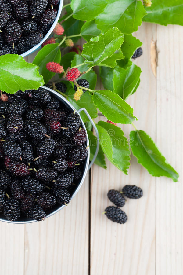 Download Mulberries In Small Buckets Stock Image - Image of fruit, black: 71217757