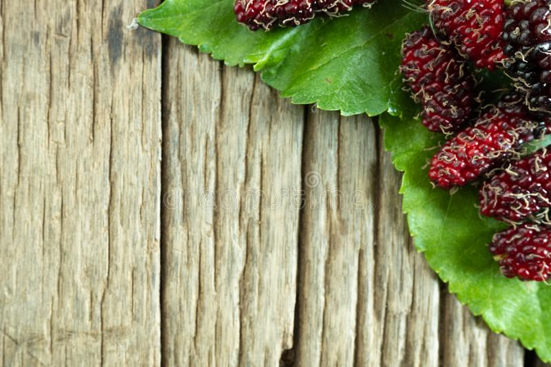 Mulberry balls on mulberry leaves, wood background stock image