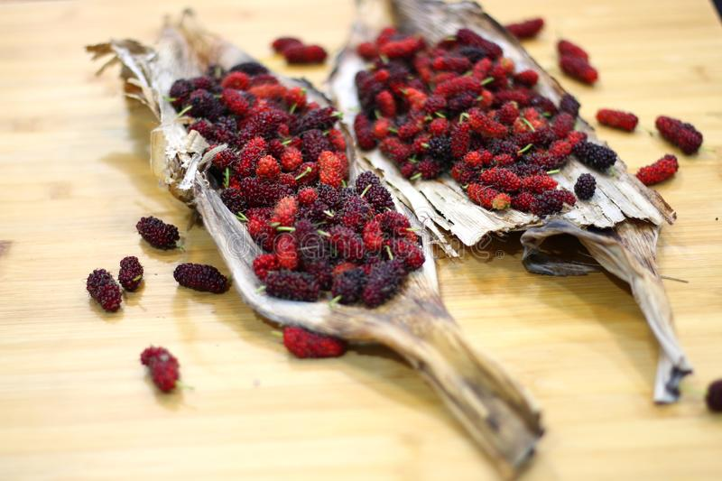 Mulberry fruits  Morus rubra  on wooden table. Red Mulberry fruits  Morus rubra  on wooden table royalty free stock images
