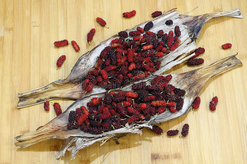 Mulberry fruits  Morus rubra  on wooden table. Red Mulberry fruits  Morus rubra  on wooden table royalty free stock photos