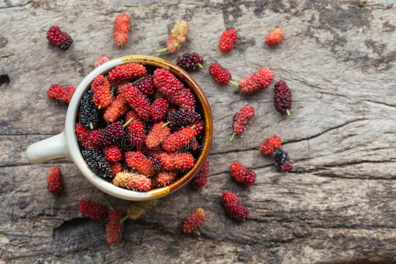 Mulberry fruits on table. Mulberry fruits on wood background stock photos