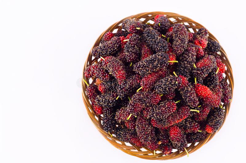 Mulberry is a plant in the family Berry. Whiich it is on white background healthy mulberry fruit food isolated. The Mulberry is a plant in the family Berry stock image