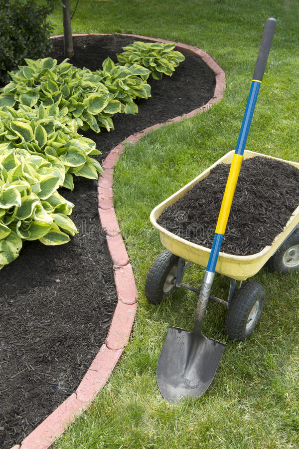 Free Mulch Bed With Edging Royalty Free Stock Photo - 25178545