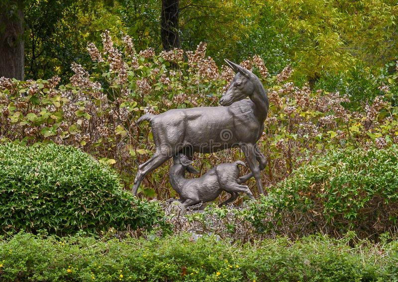 `Mule Deer` by A. Durenne in Turtle Creek Park in Dallas, Texas. Pictured is a cast iron sculpture titled `Mule Deer` by A. Durenne in Turtle Creek Park in stock image