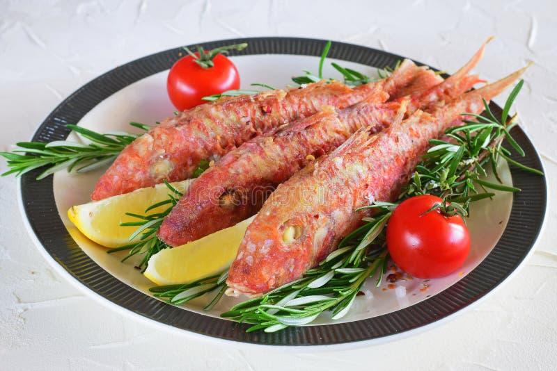 Mulet rouge grillé dans un plat avec les herbes, la tomate et le citron Nourriture saine Mode de vie de Mediterannean photo stock