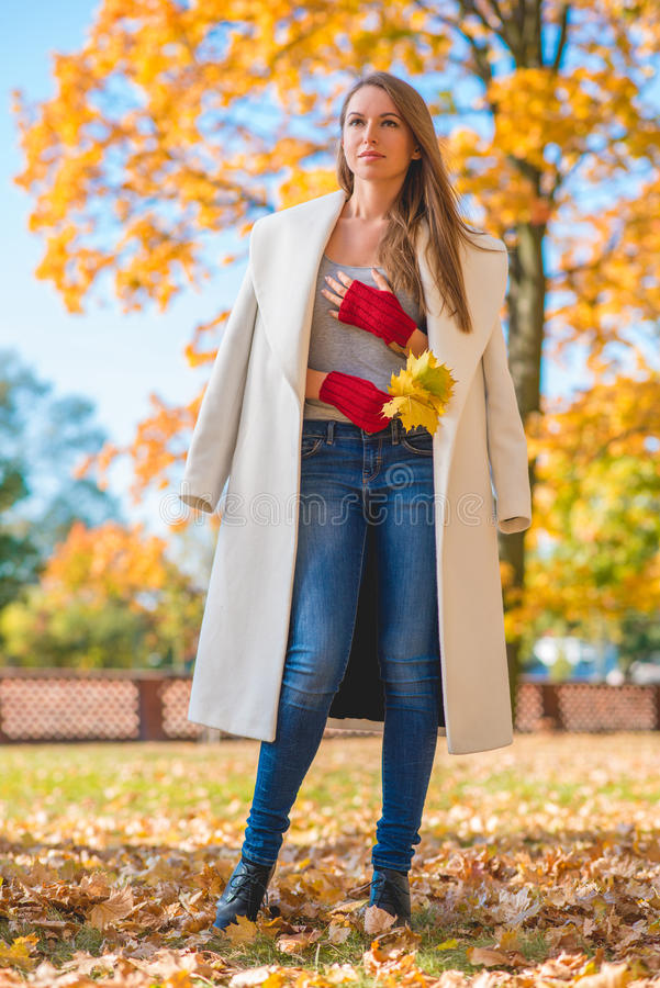 Mulher à moda na forma do outono imagem de stock royalty free