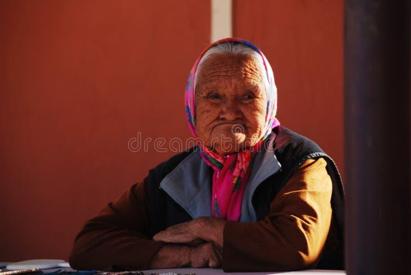 Mulher adulta do nativo americano foto de stock