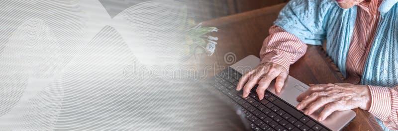 Mulher adulta que usa um portátil; bandeira panorâmico imagem de stock