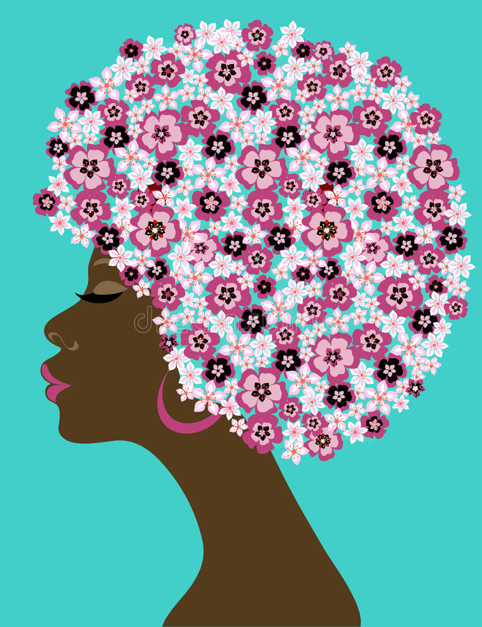 Mulher afro-americana da beleza ilustração do vetor