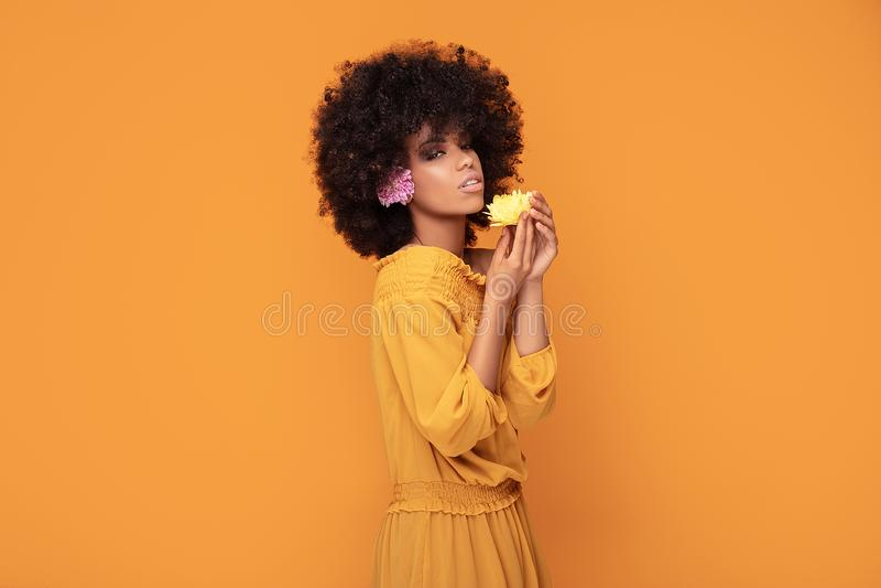 Mulher afro da beleza com flores frescas imagem de stock