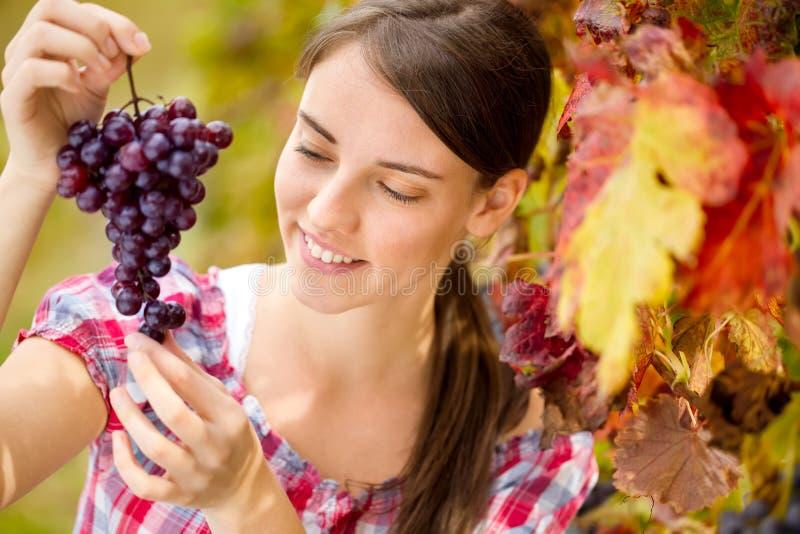 Mulher alegre que olha a uva de grupo imagens de stock